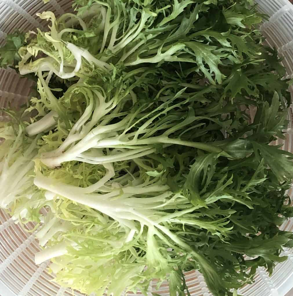 Frisee greens in salad spinner