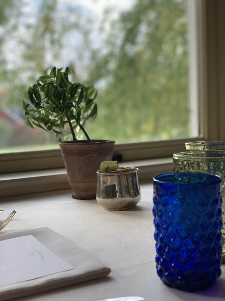 Breakfast table setting with plant and glasses